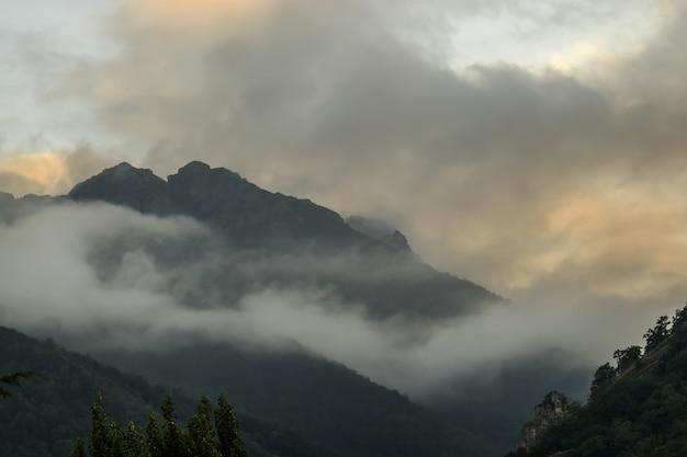 Sur le brouillard