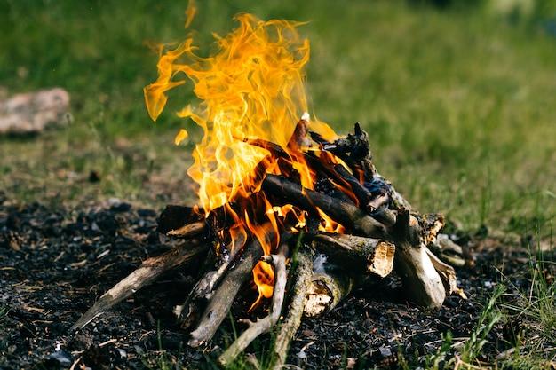 Brûler du bois de chauffage dans un camp d'été en plein air