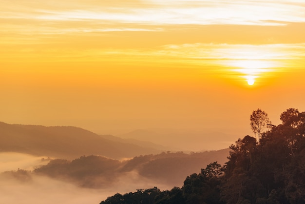 Brume de montagne au lever du soleil. beau paysage dans les montagnes au lever du soleil.
