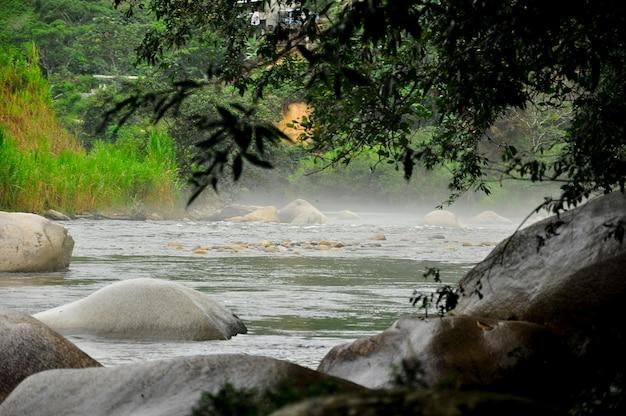 Brume sur la rivière