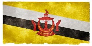 Brunei flag grunge