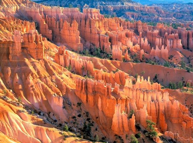 Bryce canyon hoodoos
