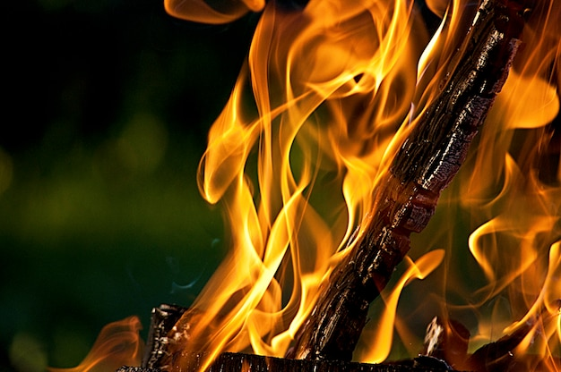 Bûche ardente dans le feu, flammes orange vif