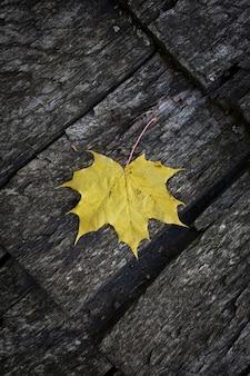 Bûches de bois d'une vieille maison. le toit est fait de planches de bois avec une feuille d'érable jaune. texture bois patiné gris naturel. fond. photo verticale horizontale. photo de haute qualité