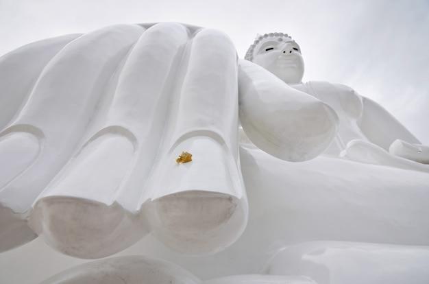Budda blanc