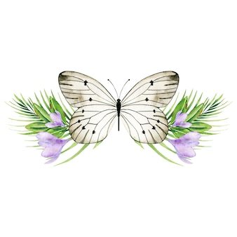 Butterfy dans les fleurs de crocus