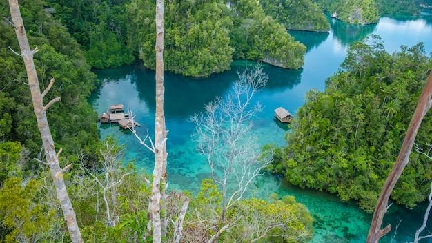Cabane en bambou dans la mangrove près de warikaf homestay, kabui bay et passage. île gam, papouasie occidentale, raja ampat, indonésie.
