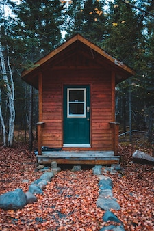 Cabane brune en forêt