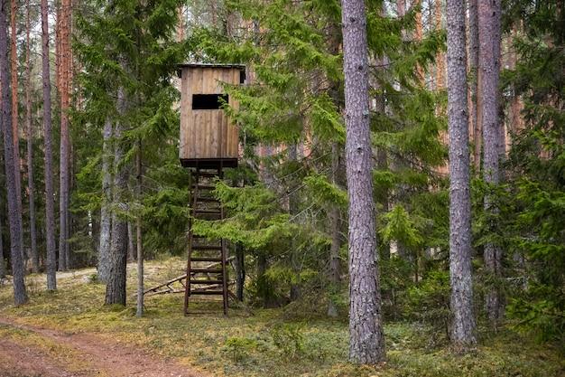 Cabane de chasseurs dans la forêt.