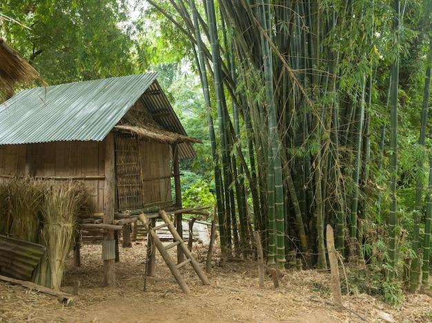 Cabane dans la forêt de bambous, ban gnoyhai, luang prabang, laos