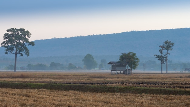 Cabane pour les agriculteurs avec un fond de montagne