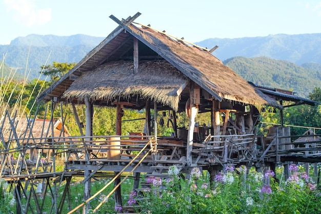 Cabane thaïlandaise à la ferme avec la montagne