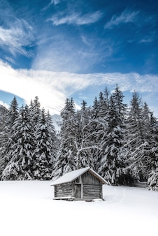 Cabine sur panorama d'hiver