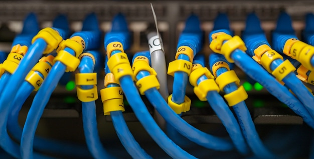 Câble lan bleu sur les commutateurs réseau