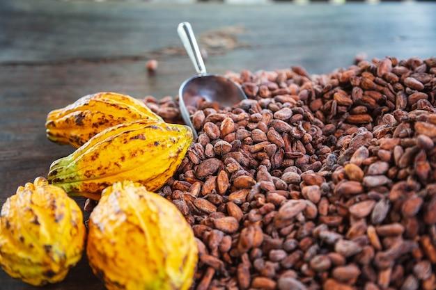 Les cabosses de cacao et les fèves de cacao sur un fond en bois