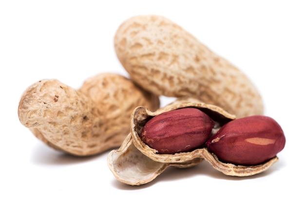 Cacahuètes sur fond blanc