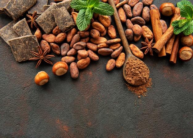 Cacao en poudre et haricots