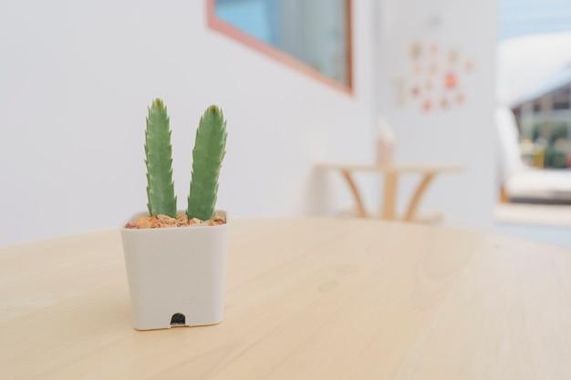 Cactus dans de petits pots blancs, posés sur une table en bois pour la décoration dans un café minimaliste. espace de copie.
