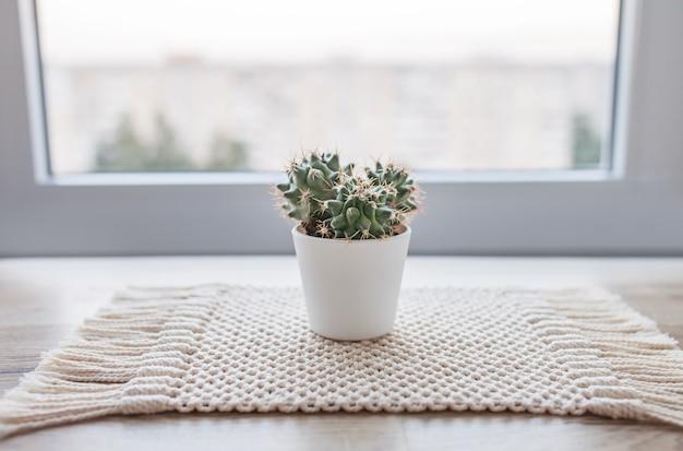 Cactus en pot sur tapis de tapis de ficelle de coton naturel sur table en bois rustique. style éco avec plante verte. macramé moderne fait à la main. concept de décoration de maison tricoté