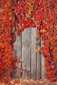 Cadre abstrait automne. clôture et feuilles