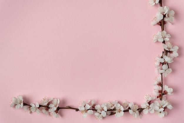 Cadre d'angle de branches fleuries blanches sur un rose
