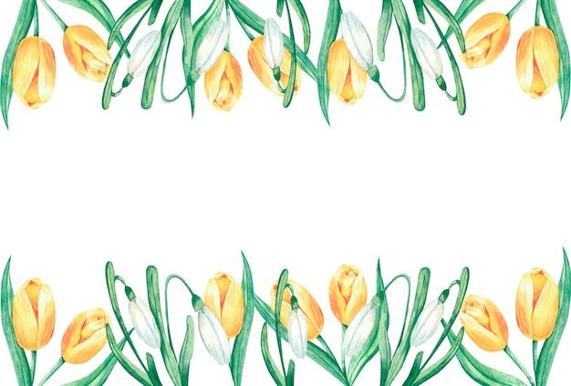 Cadre aquarelle avec de grandes fleurs de tulipes jaunes de printemps et fond de cadre de perce-neige blanc