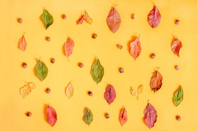 Cadre automne avec cadeau, feuilles d'automne, bâtons de cannelle, étoiles d'anis, cônes et canneberges séchées. vue de dessus, plat poser