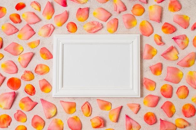 Cadre blanc entouré de pétales de rose