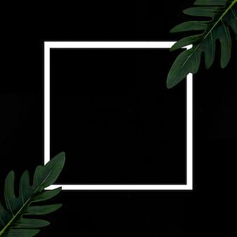 Cadre blanc sur fond noir avec des plantes tropicales (résumé de mal escrito en esta y otra tarea)