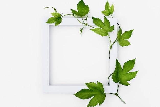 Cadre blanc avec houblon et feuilles
