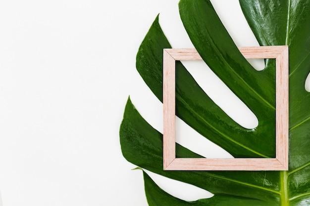 Cadre en bois avec feuille verte