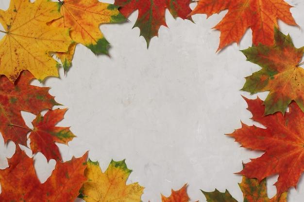 Cadre de bordure de feuilles d'automne colorées sur gris