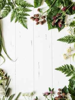 Cadre botanique de mûre, camomille, fleur de tilleul, trèfle sur fond de bois. composition de plat poser d'herbes sauvages fraîches et de fleurs sur la vue de dessus de fond blanc rustique