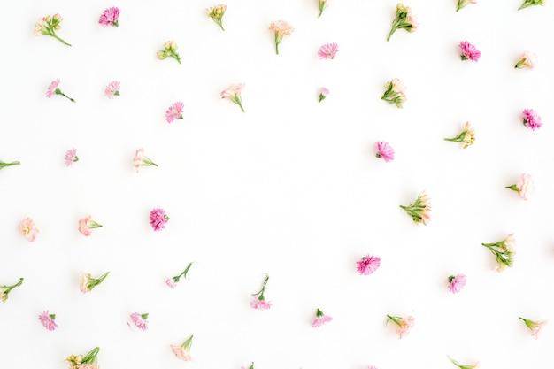 Cadre avec bourgeons de fleurs sauvages roses et beiges, feuilles vertes, branches sur blanc
