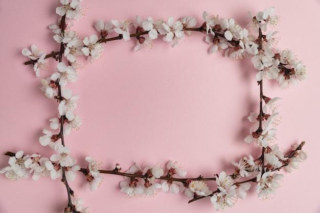 Cadre de branches avec des fleurs sur fond rose.
