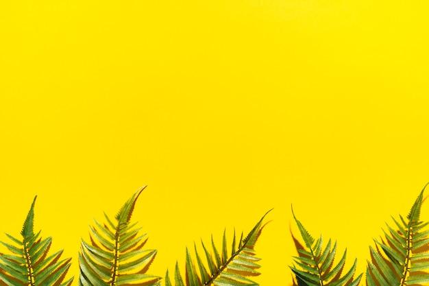 Cadre de branches de palmier
