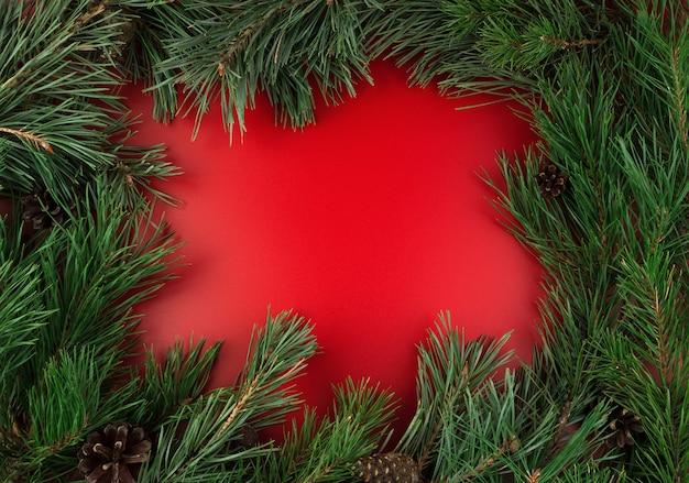 Cadre avec des branches de pin sur fond rouge