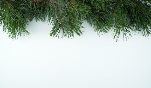 Cadre de branches de pin