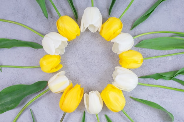 Cadre de cercle de fleurs de tulipes blanches et jaunes sur une surface grise