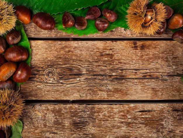 Cadre de châtaignes, feuilles et fraise de châtaignier.