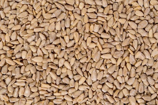 Cadre complet de graines de tournesol.