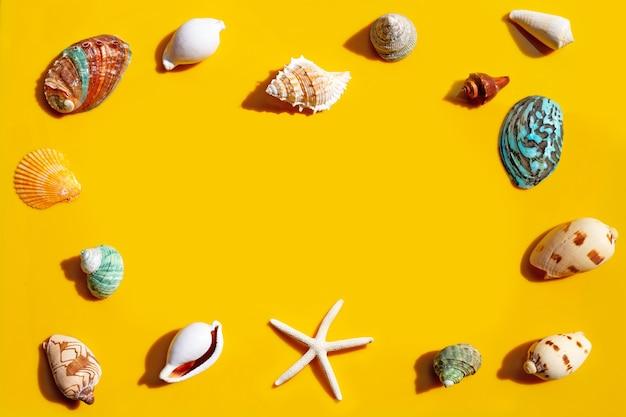 Cadre composé d'étoiles de mer et de coquillages exotiques sur fond jaune.
