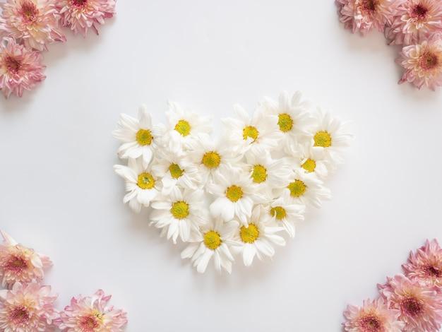 Cadre composé de fleurs roses et blanches sur fond blanc