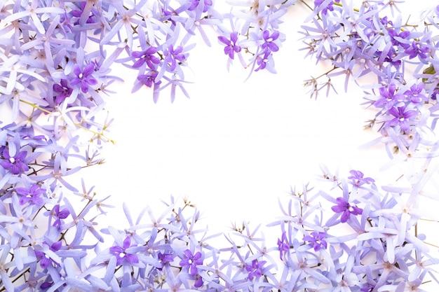 Cadre composé de fleurs violettes sur blanc
