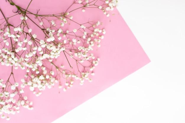 Cadre composé de petites fleurs blanches sur fond rose pastel.
