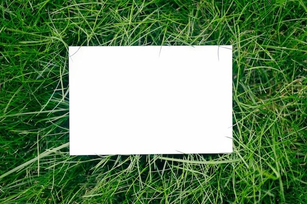 Cadre de composition de mise en page créative fait d'herbe verte fraîche avec une belle texture avec une note de carte de papier blanc et des ombres de la lumière du soleil, une mise à plat et un espace de copie.
