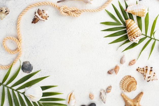 Cadre de coquillages et crustacés