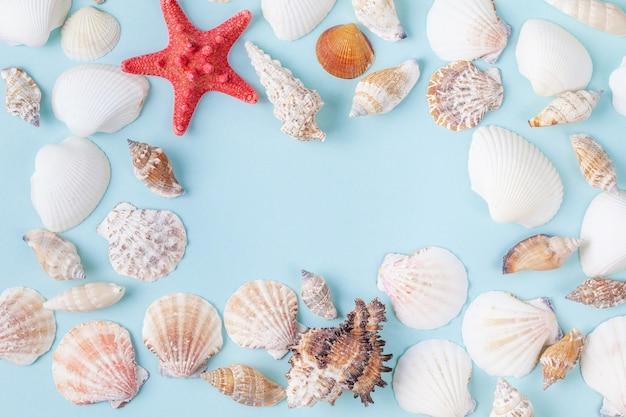 Cadre de coquillages et étoile de mer sur fond bleu