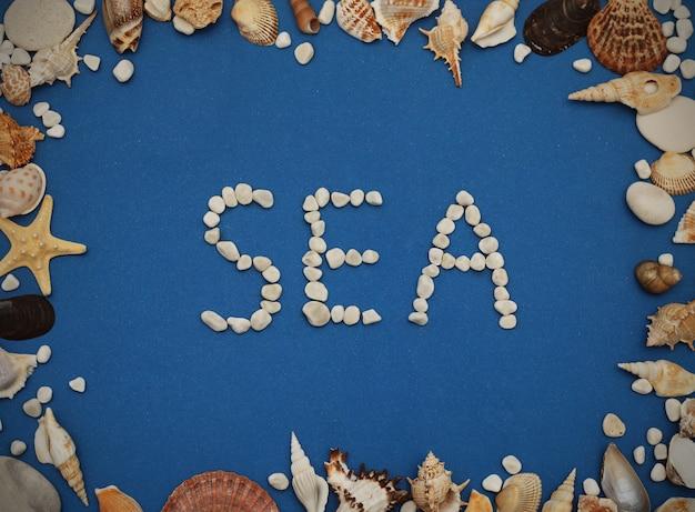 Cadre de coquillages sur fond bleu. coquillages et étoiles de mer sur un fond bleu foncé.