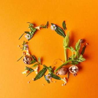 Cadre créatif de noix, de fleurs et de feuilles vertes sur fond orange, composition d'automne à plat